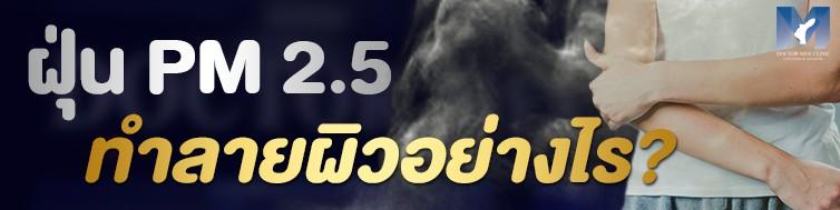 ฝุ่น PM 2.5 ทำลายผิวอย่างไร ?